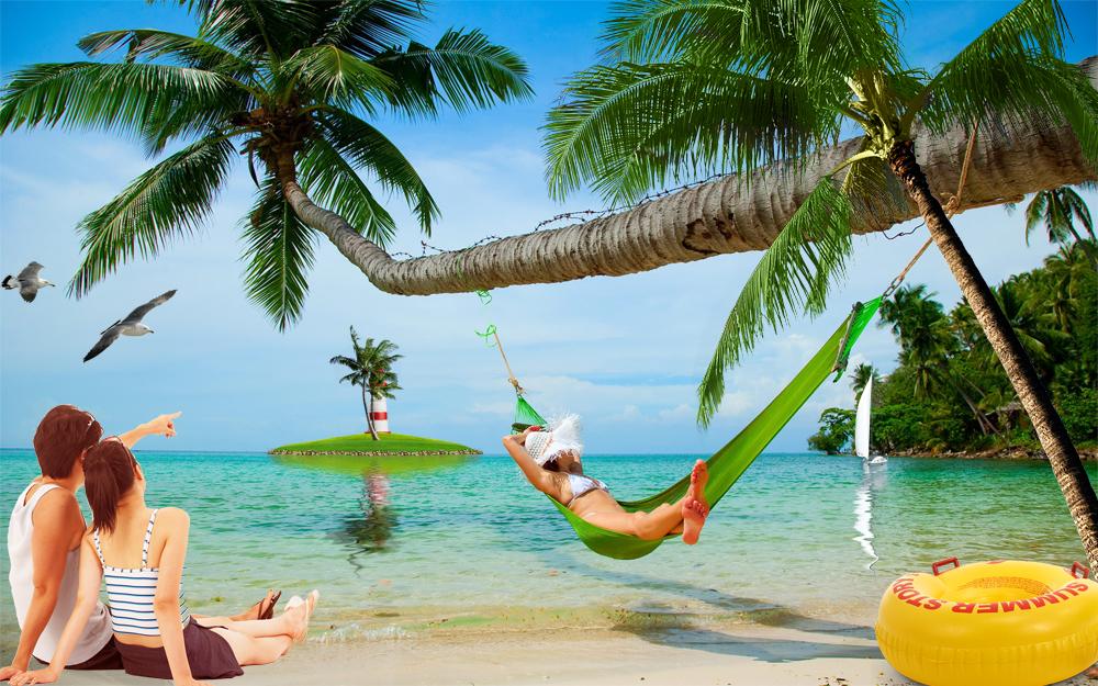 海滨椰树风光