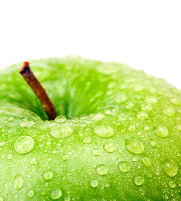 苹果树叶图片大全大图