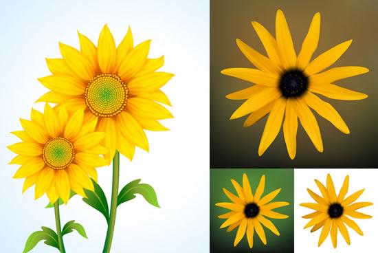 0 点 关键词: 黄色向日葵与菊花矢量素材,黄色向日葵,葵花,菊花图片