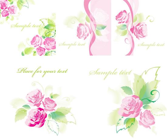 娇妍粉红玫瑰