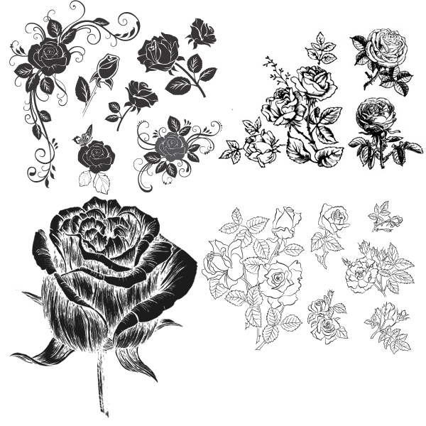 花瓣,花蕊,叶子,手绘