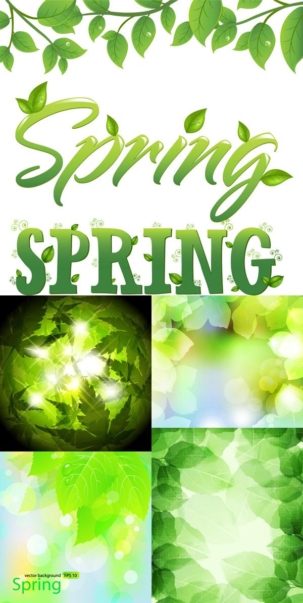 光晕,水珠,绿色背景,spring,春天背景,梦幻,清新,自然,spring字体设计