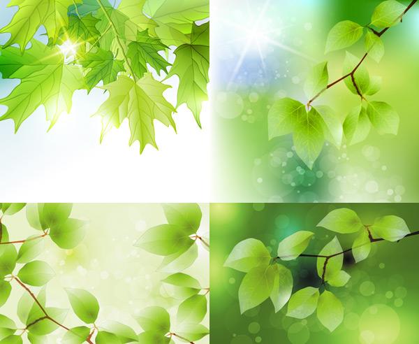 关键词: 夏季绿叶矢量素材,夏季,绿叶,叶子,树叶,树枝,阳光,光线