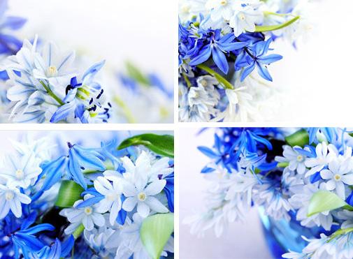 小花蓝怎么折步骤图片