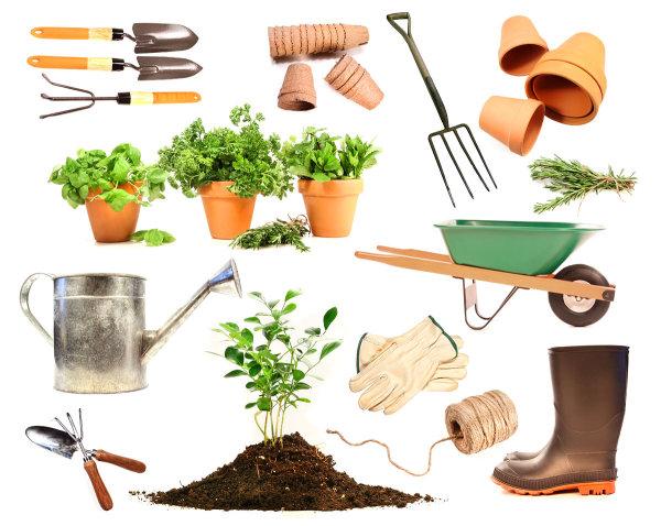 园艺题材元素