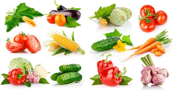 中国 食物/蔬菜...