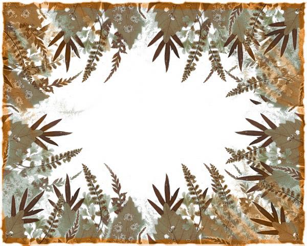 Plant a decorative border