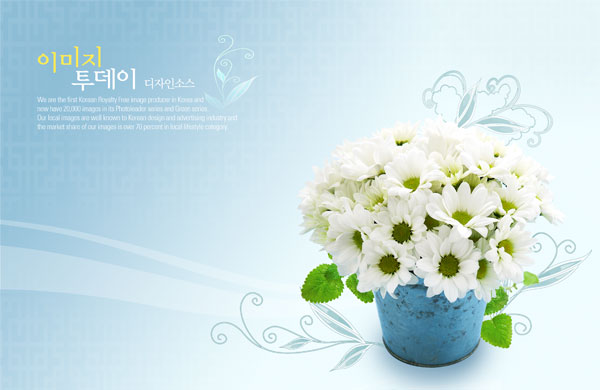 Floral decorations wallpapers