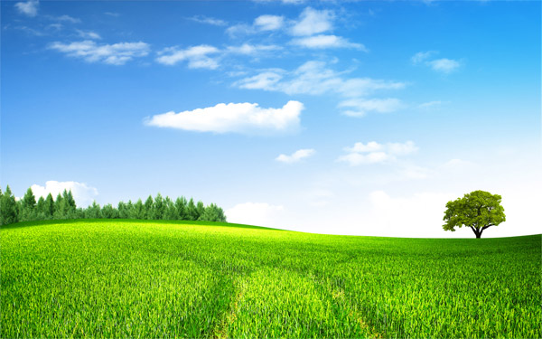 農田,田園,風光,田野,大樹,樹木,樹林,森林,藍天,云彩,云朵,白云,自然