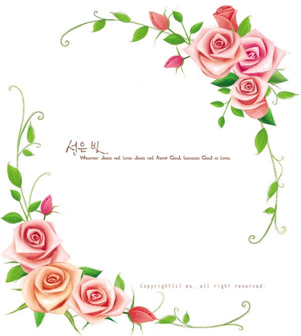 玫瑰花与藤蔓