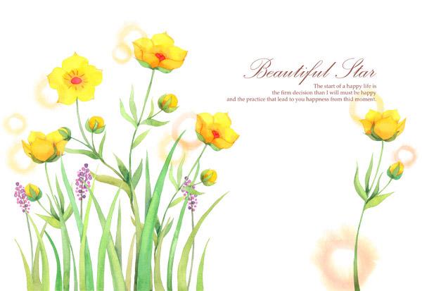 小清新手绘插画花朵