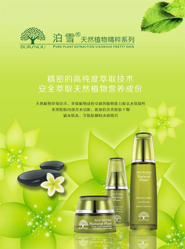 化妆品海报,化妆品,绿色,绿色背景,树叶,绿叶,植物,化妆品设计,广告语图片