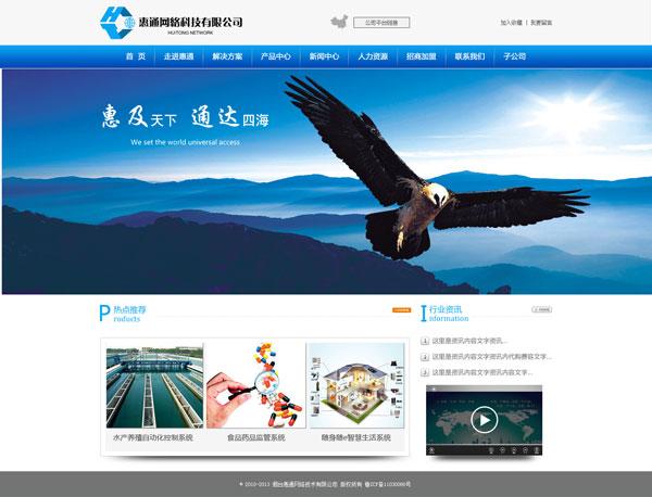 网站_网络公司网站