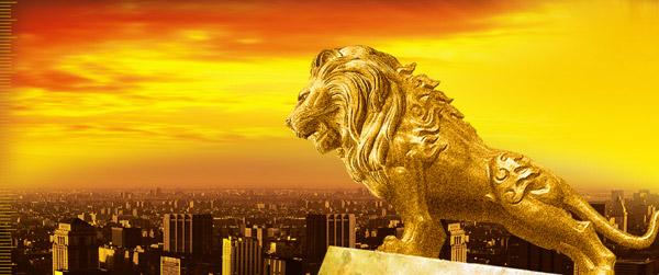 金狮狨 特殊的稀有动物