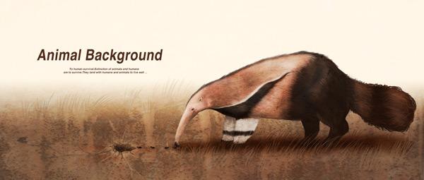 卡通动物插画,野生动物图片