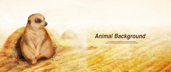 可爱动物背景_素材中国sccnn.com