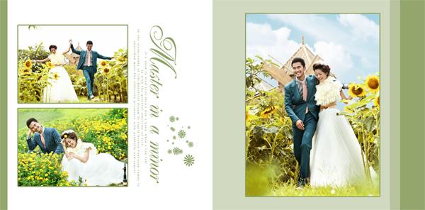 婚纱照,相册,婚纱,14寸,方册,浪漫,影楼,户外,摄影,新郎,新娘,向日葵