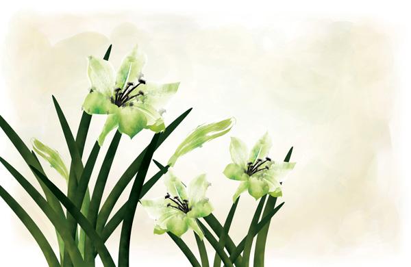 手绘水彩百合花