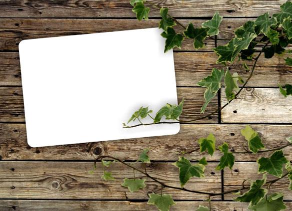 绿叶木板背景01_背景底纹