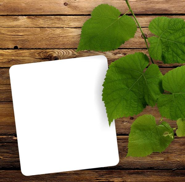 绿叶木板背景02_背景底纹