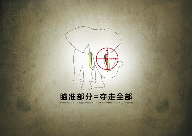 保护动物公益海报_素材中国sccnn.com