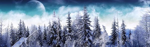 淘宝冬季雪景海报背景图片素材