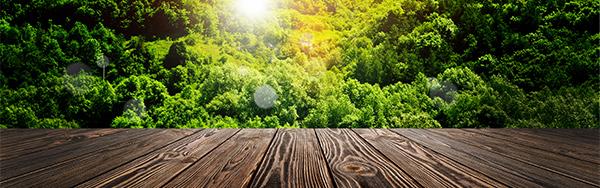 网页所需点数: 0 点 关键词: 大自然地板海报背景素材,大自然,地板,木