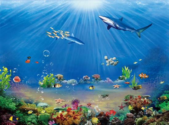 绚丽海洋海底世界