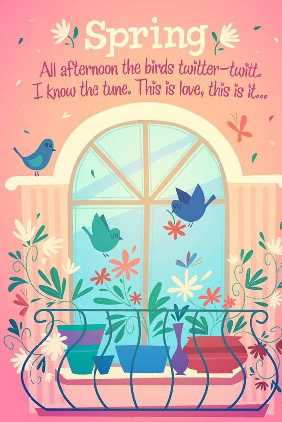 阳台小鸟春天来了