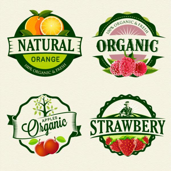 可爱水果简单图片