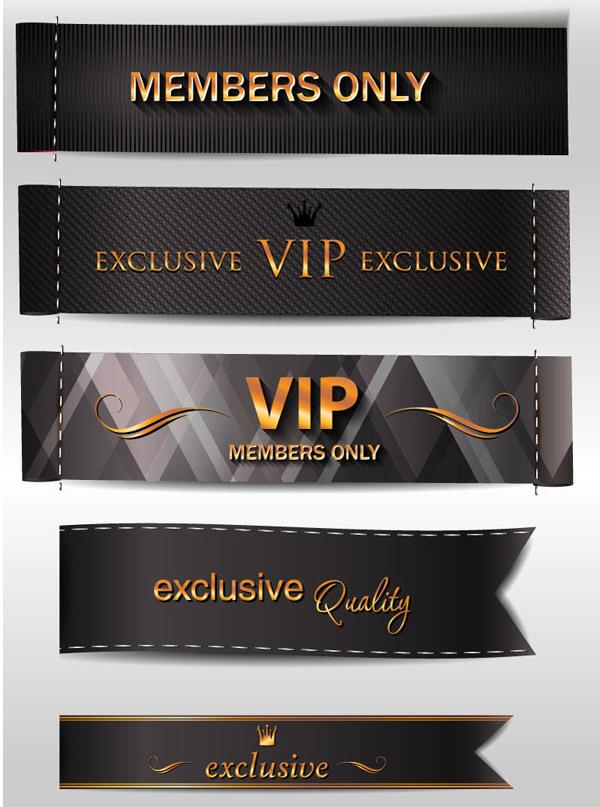 VIP设计元素