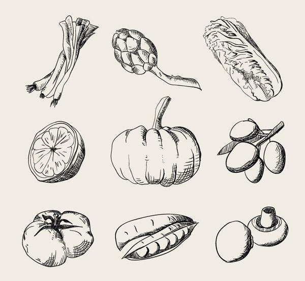 手绘水果蔬菜_素材中国sccnn.com图片