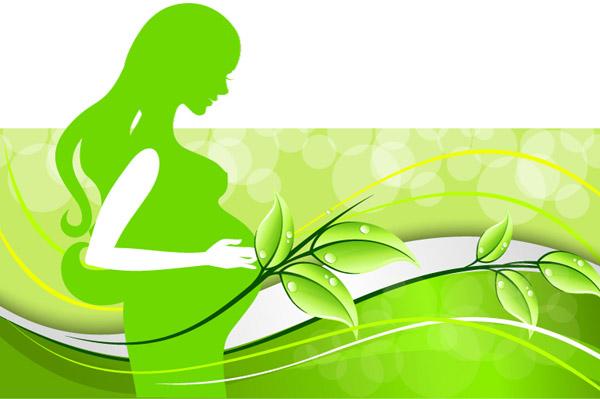 资源孕妇_环保,树叶,背景,孕妇,矢量图,eps格式 下载文件特别说明:本站所有资源