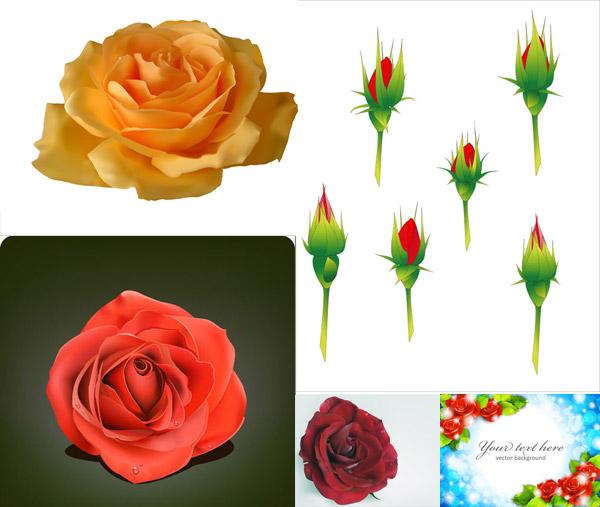 矢量图,设计素材,玫瑰花,花朵,花卉,鲜花,红玫瑰,背景,梦幻,唯美,蓝色