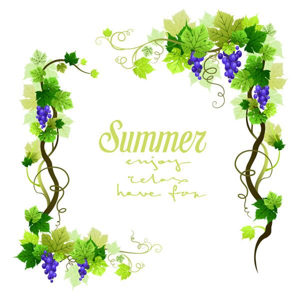 夏季的手绘本图片