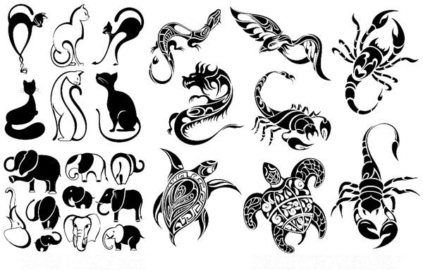 半胛鲨鱼吃乌龟纹身图案
