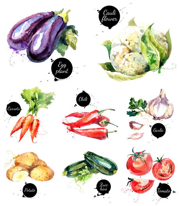 果实,水墨,手绘,粮食,餐饮美食,西红柿,番茄,菜花,茄子,辣椒,南瓜,红图片