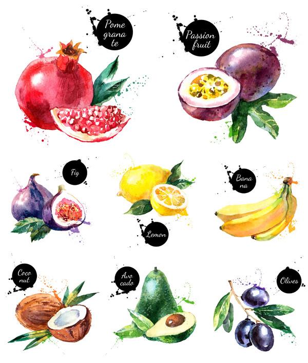 新鲜水果pop海报手绘