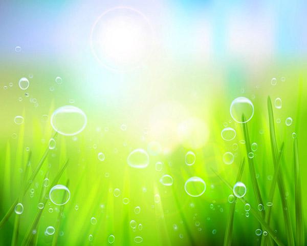 绿色清新草地背景