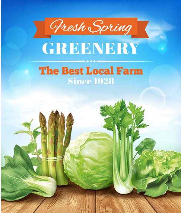 绿色蔬菜矢量