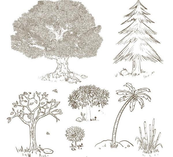 手绘树木设计