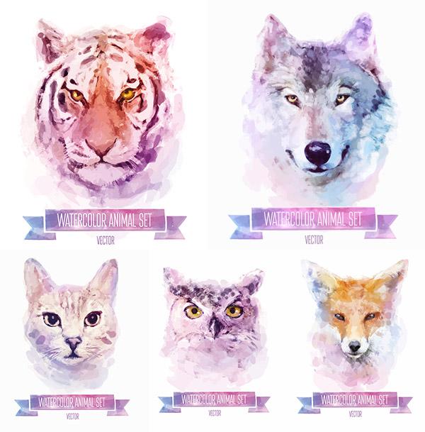 可爱的水彩动物矢量素材,水彩动物,动物水彩画,卡通水彩,狐狸,猫头鹰,狼,老虎,小猫,动物头部,EPS格式