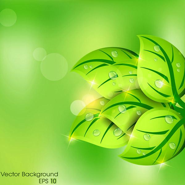 植物设计矢量素材,,阳光