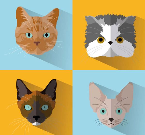 矢量家禽家畜所需点数: 0 点 关键词: 猫咪头像矢量素材下载,宠物