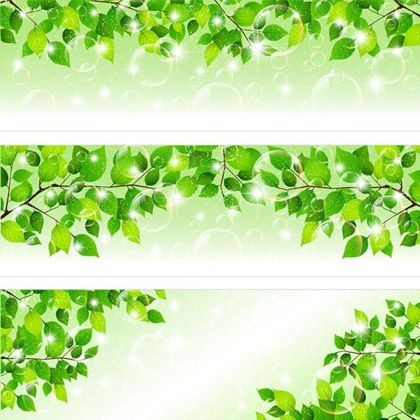 关键词: 时尚绿色春天主题banners矢量素材,绿色背景,绿叶背景,树叶图片