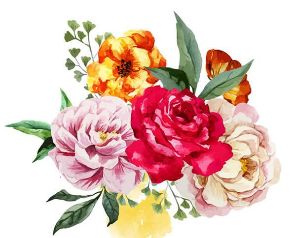 0 点 关键词: 水彩花束矢量素材下载,芍药花,花束,花卉,水彩,牡丹花