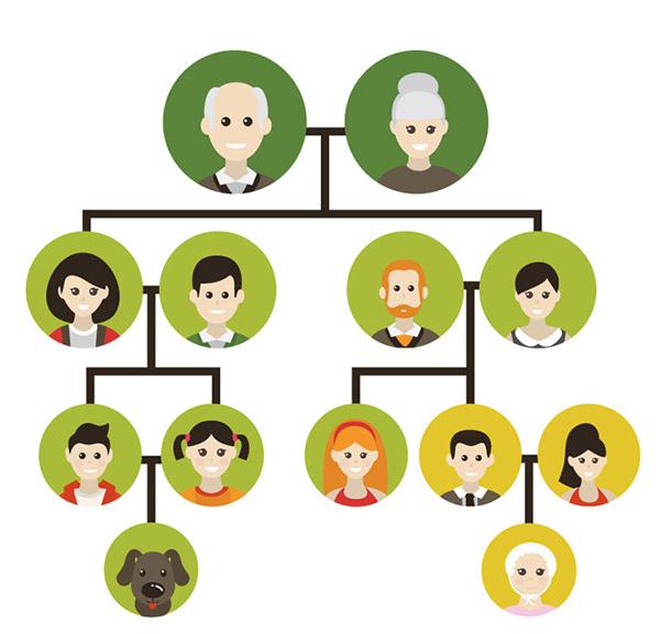 家族树插画矢量