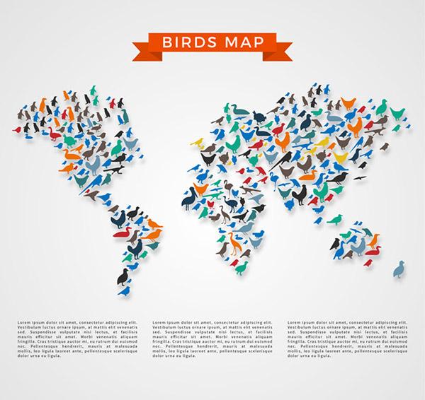0 点 关键词: 彩色鸟类世界地图矢量素材,燕子,鸽子,海鸥,仙鹤
