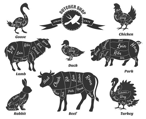 点构成的动物图案