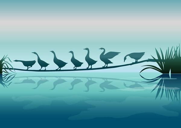 关键词: 美丽天鹅剪影矢量素材下载,池塘,天鹅,湖水,自然,剪影,矢量图